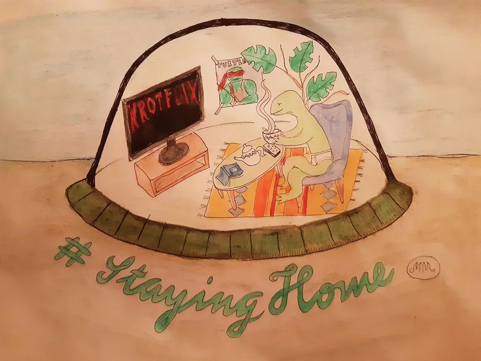 turtleathome